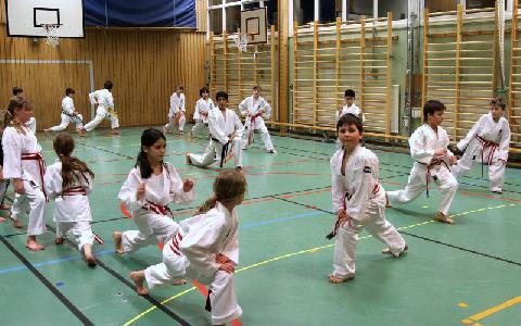 Ibrahim Husseini på karateträningen