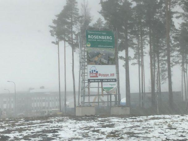 En dimmig skog med en reklamskylt