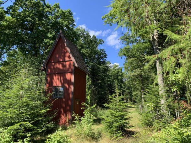 En röd stuga i en grönskande skog