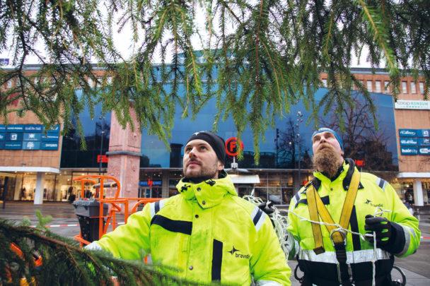 Gusten Bergström och Patrik Jansson invid den stora granen på torget