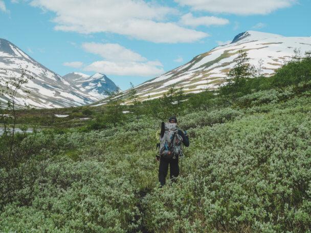 En person vandrar över en bergs-äng mot ett berg