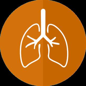 Ett par tecknade lungor